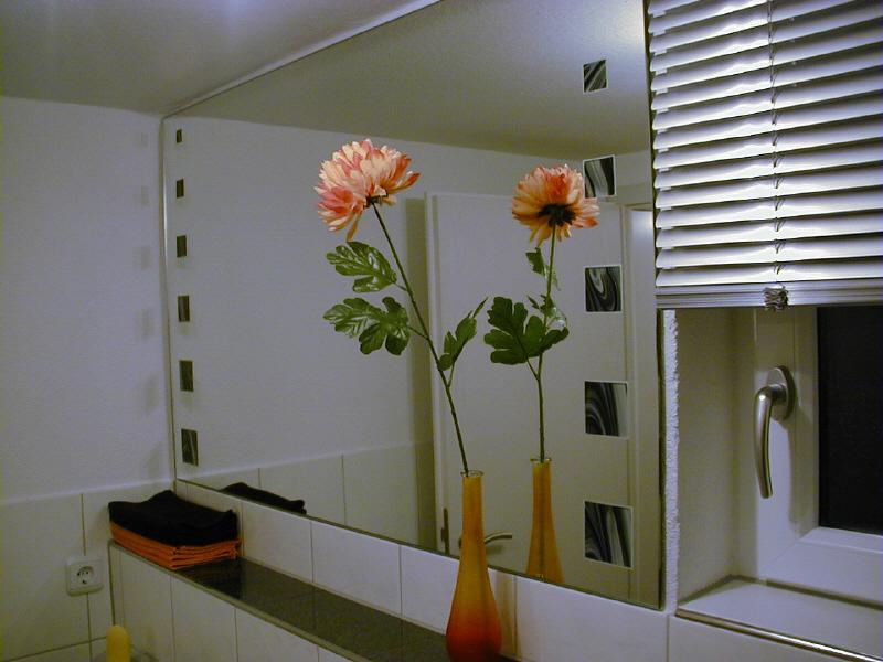 Spiegel for Spiegel reinigen